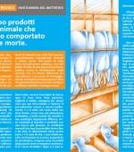 PieghevoleA5-Latte-interno1