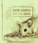 disegno di Luigia Marturano fonte: bastaschiavi.blogspot.it