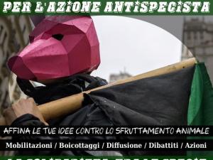 Presidio Antifascista per la Liberazione Animale @ Palazzo di Giustizia - Milano | Milano | Lombardia | Italia
